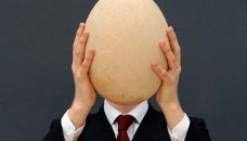 elephant-bird-egg-auctioned_65837_600x450_thumb
