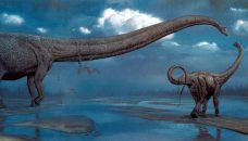mh_mamenchisaurus
