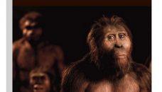 La planète des singes a existé ! Les ancêtres de l'Homme par Priscilla Bayle et Anne Delagnes