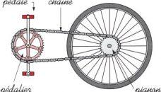 Comment fonctionnent les vitesses d'un vélo ?