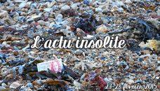 actu_insolite_fev2015_red
