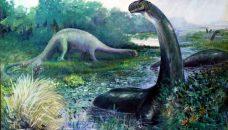 Brontosaurus 2.0