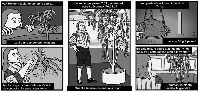 Jean-Baptiste Van Helmont découvre une propriété étonnante des plantes…