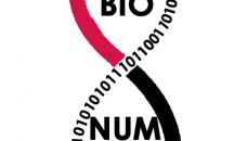 Lancement de Culture Biologique Numérique, un blog des étudiants de Licence, UFR Sciences du Vivant de l'université Paris Denis Diderot