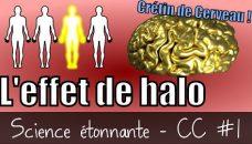 L'effet de halo (Crétin de cerveau #1)