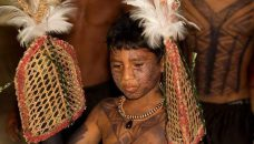 Meninos-indigenas-satere-mawe-Ritual-Tucandeira