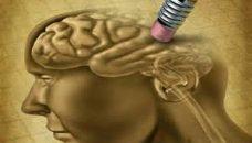 Dans les méandres d'Alzheimer : comment anticiper ?