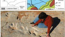Megalosaurus et les vacances de Monsieur Bulot