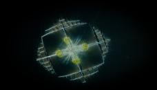 plancton-logo
