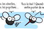 Les diptères