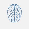 Headshot - neurosciences